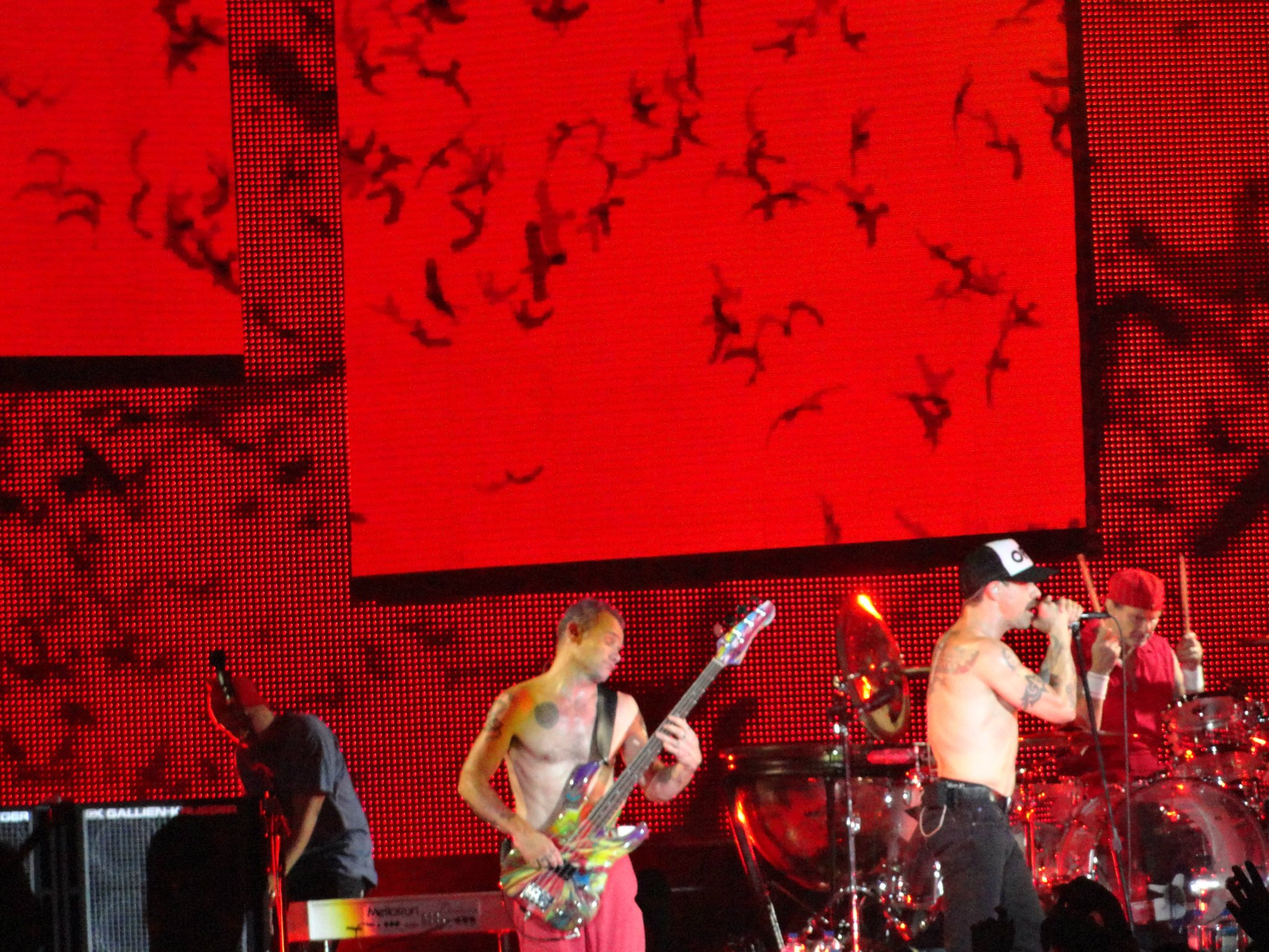 Discography Red Hot Chili Peppers Torrent - sandrianzgx